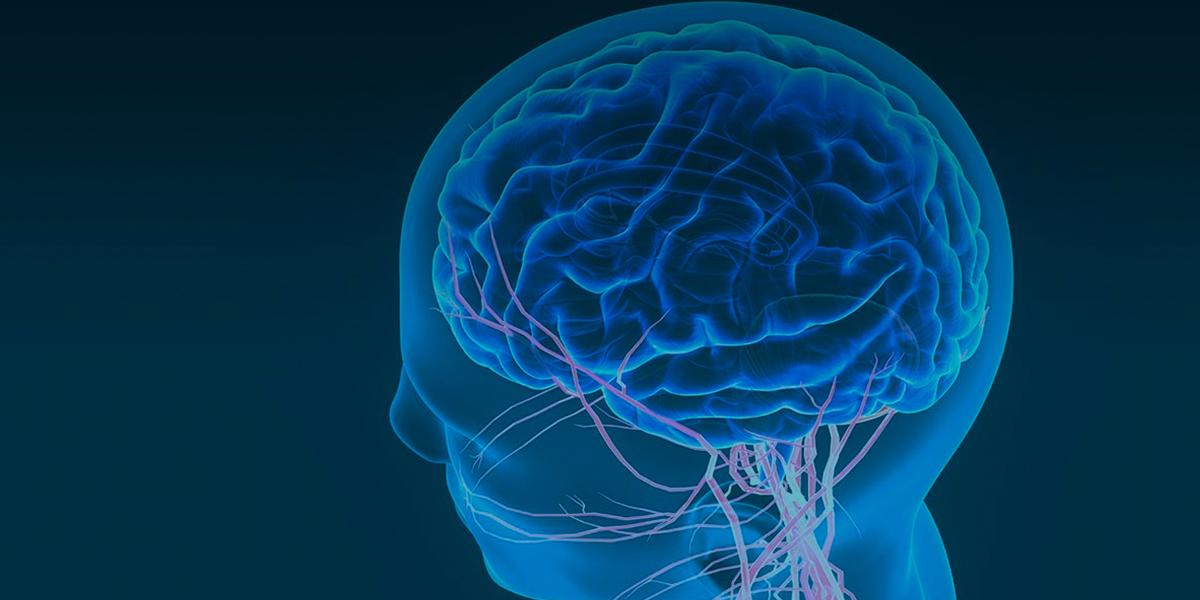 CellTrials.org: рост клинических исследований по применению стволовых клеток для лечения инсульта